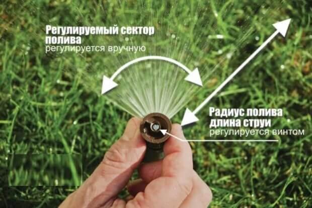 Полив газона Воронеж